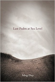 Meg's first full-length poetry collection, Last Psalm at Sea Level, is available now!